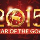 2015 schaap jaar
